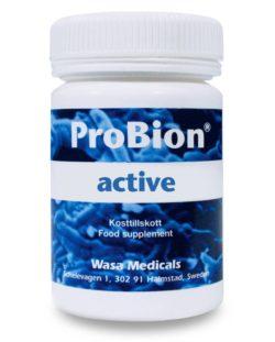 Colon Health Probiotics Role Of Probiotics In Colon Cancer Probion Probion 1 Best Medical Grade Probiotics